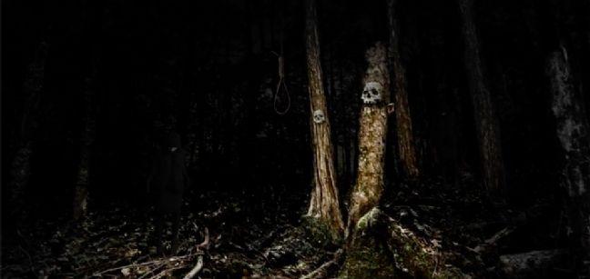 "Aokigahara, la forêt ""hantée"" qui attire les suicidaires"